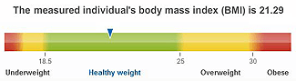 Body Mass Index Scale: healthy BMI results in better FtM neophallus